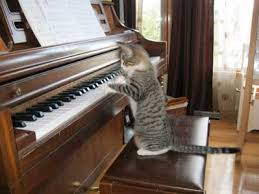 Started Piano lessons at 5